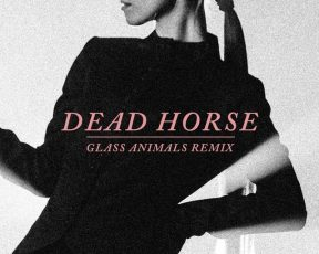 "Hayley Williams lança remix de ""Dead Horse"" por Glass Animals"